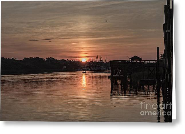 Docked Boat Greeting Cards - Early Birds Greeting Card by Roberta Byram