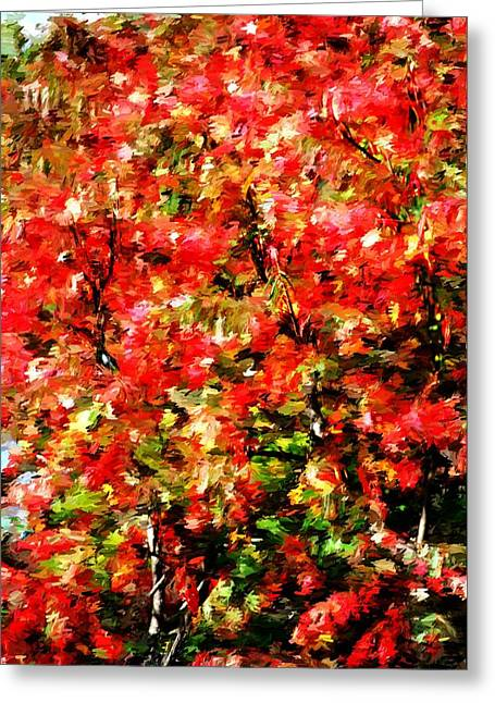 Abstract Digital Photographs Greeting Cards - Early Color Painting Greeting Card by David Lane