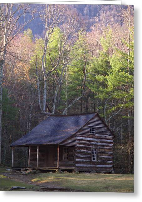 Log Cabins Greeting Cards - Early Cove Homestead Greeting Card by Wayne Skeen