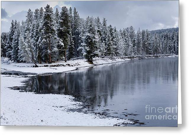 Winterscape Greeting Cards - Early Fall Storm in Yellowstone Greeting Card by Sandra Bronstein