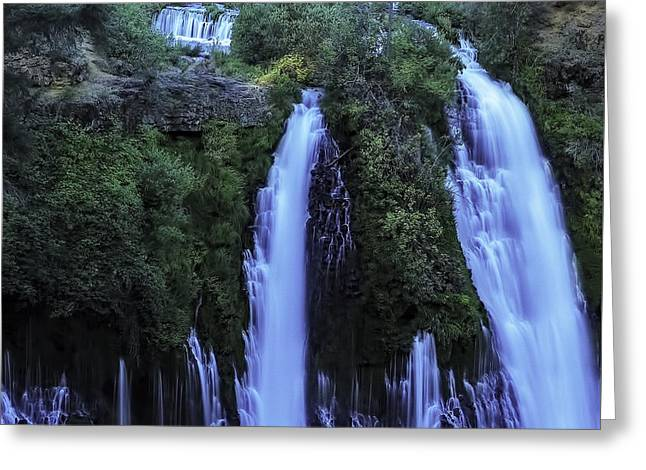Moss Greeting Cards - Early Morning At Bernie Falls Greeting Card by Nancy Marie Ricketts