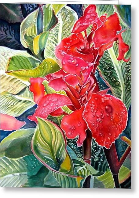 Raining Greeting Cards - Early Morning Cannas  Greeting Card by Therese AbouNader