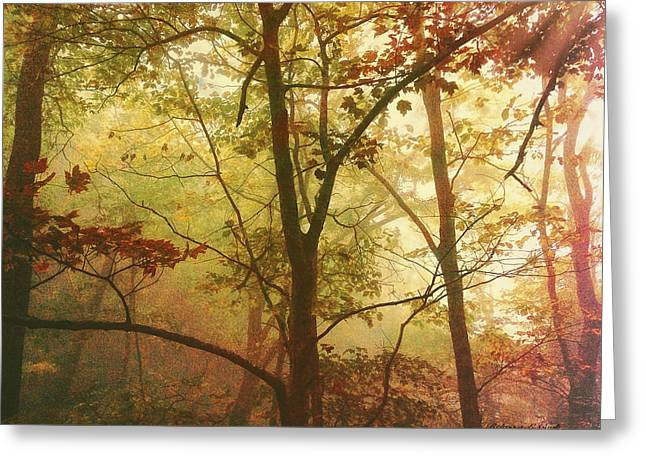 Early Morning Mist Greeting Card by Bellesouth Studio