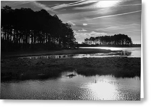 Salt Marsh Greeting Cards - Early Morning On Beach Drive Greeting Card by Steven Ainsworth