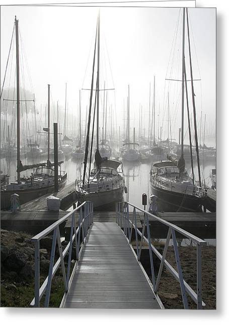 Sailboats Docked Greeting Cards - Early Morning on the Docks Greeting Card by Laurie With