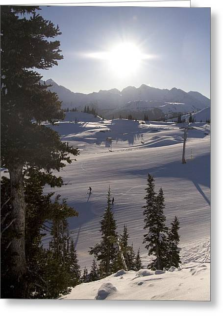 Migratory Bird Greeting Cards - Early Morning Skiing Greeting Card by Taylor S. Kennedy