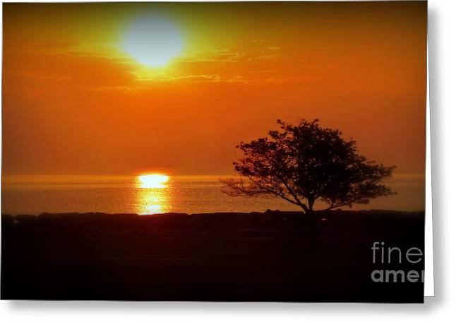 Greeting Cards - Early Morning Sunrise On A Silhouetted Beach Greeting Card by Kay Novy