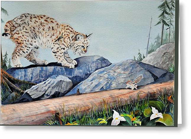 Bobcats Paintings Greeting Cards - Early Morning Surprise Greeting Card by John W Walker