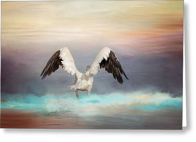 Flying White Pelicans Greeting Cards - Early Morning Swim Greeting Card by Jai Johnson