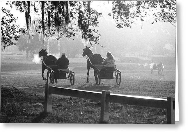 Horse And Cart Greeting Cards - Early Morning Workout Greeting Card by M Kathleen Warren