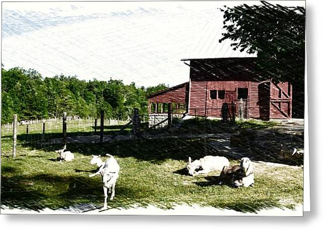 Historic Site Greeting Cards - Early Risers Sketch Greeting Card by Gary Conner