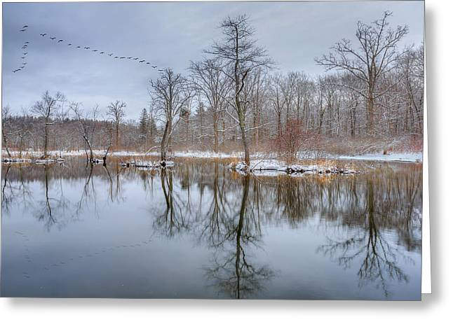 Trees Reflecting In Water Greeting Cards - Early Spring in New England Greeting Card by Bill Wakeley