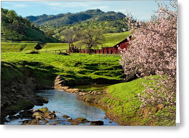 Pastureland Greeting Cards - Early Spring in the Valley Greeting Card by Kathleen Bishop
