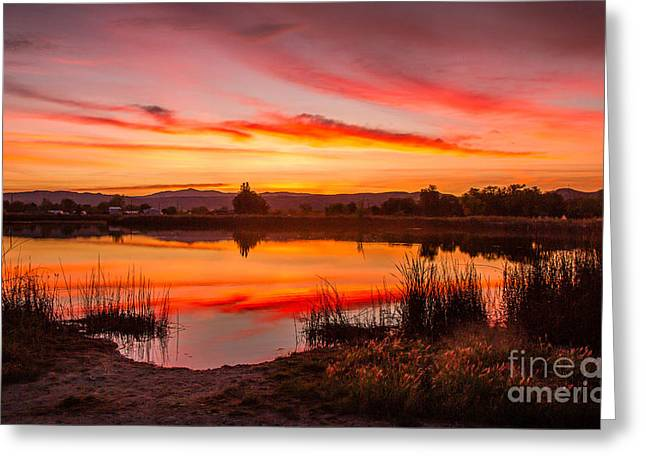 Layer Greeting Cards - Early Sunrise Greeting Card by Robert Bales