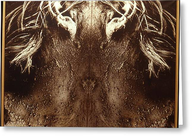 Lanvin Greeting Cards - Ears / 1 Greeting Card by Jean-Marie Bottequin