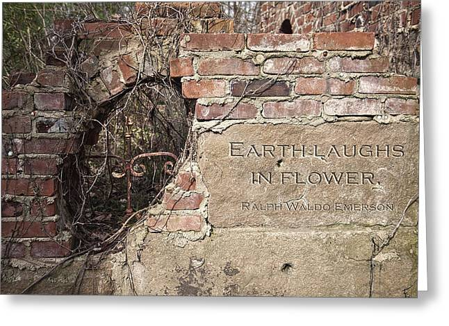 Earth Laughs In Flower Wall Greeting Card by Tom Mc Nemar