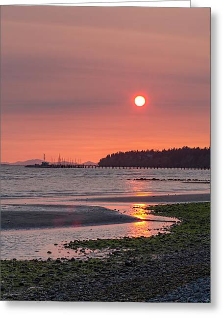 Algae Greeting Cards - East Beach Sunset Greeting Card by Michael Russell