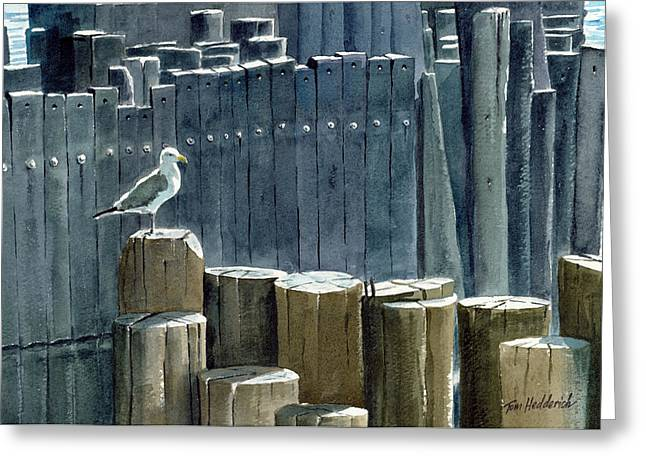 River Prints Greeting Cards - East River Gull Greeting Card by Tom Hedderich