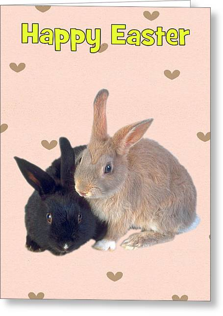 Wildlife Celebration Greeting Cards - Easter Bunnies Card Greeting Card by Mary J Tait