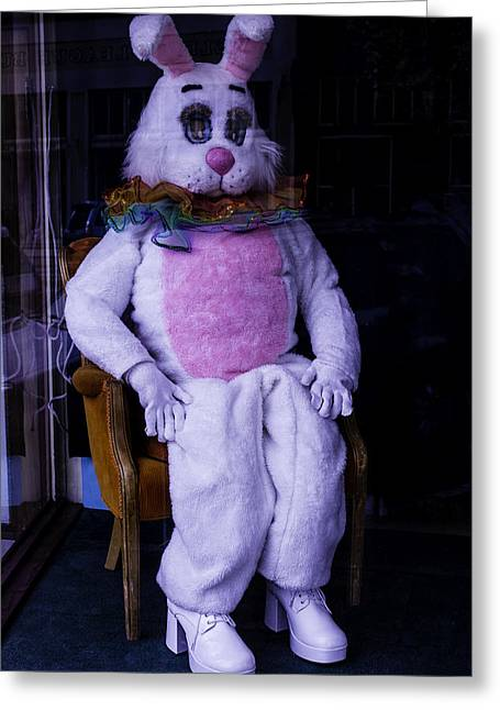 Easter Bunny Costume  Greeting Card by Garry Gay