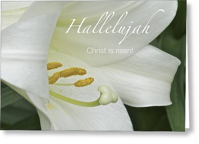 Easter Greeting Cards - Easter Hallelujah Greeting Card by Michael Peychich