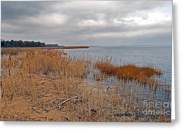 Surf Photos Art Greeting Cards - Eastern Shore Greeting Card by Skip Willits