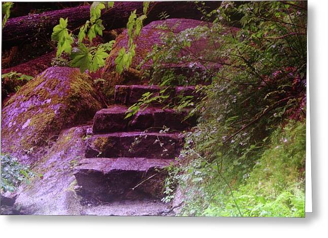 Stone Steps Greeting Cards - Easy Steps  Greeting Card by Jeff  Swan