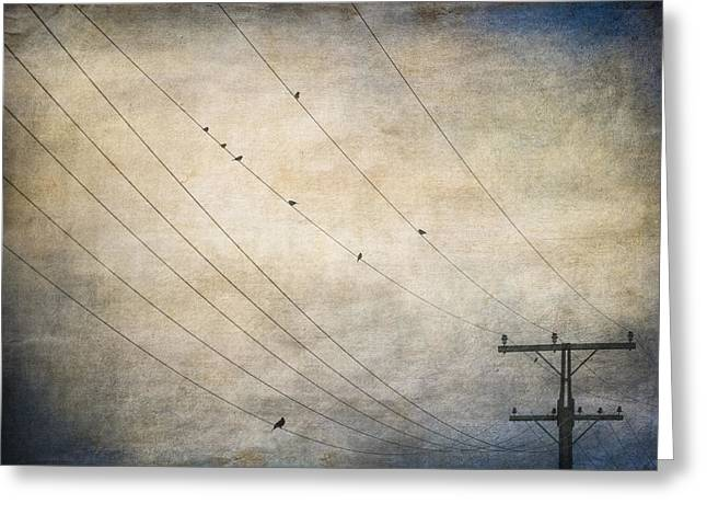 Telephone Poles Greeting Cards - Eavesdroppers Greeting Card by Constance Fein Harding