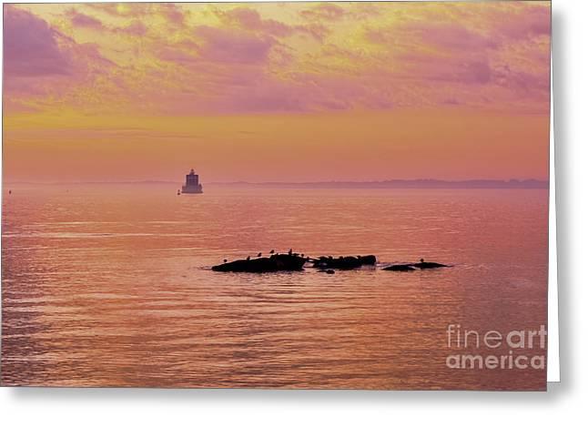 New England Ocean Greeting Cards - Ebb Tide Greeting Card by Joe Geraci