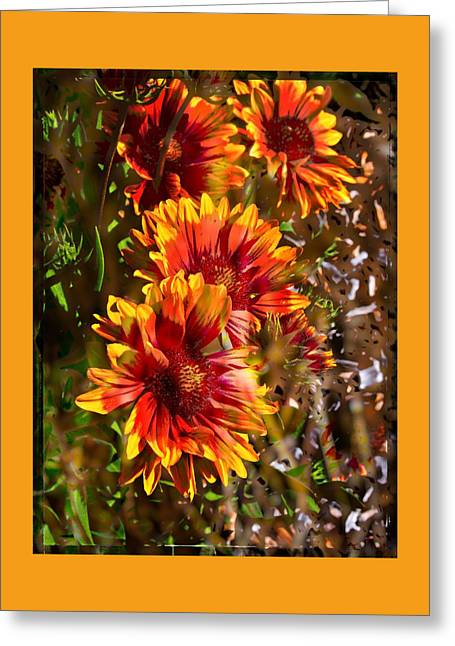 Abstracted Coneflowers Greeting Cards - Echinacea Greeting Card by Thom Zehrfeld