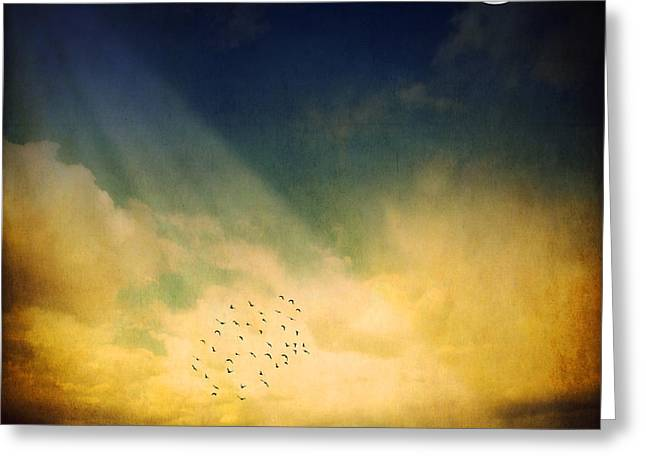 Birds Moon Greeting Cards - Echo Of A Sigh Greeting Card by Philippe Sainte-Laudy