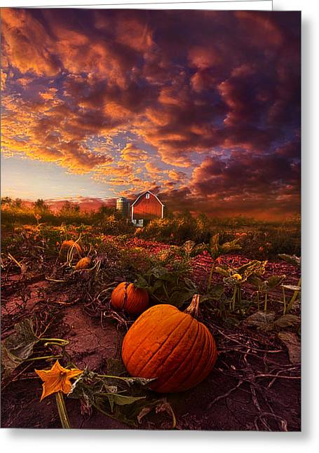 Echos You Can See Greeting Card by Phil Koch