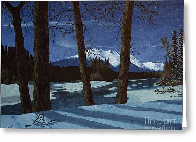 Winter Night Greeting Cards - Eddy Park Moonlight Greeting Card by Stanza Widen