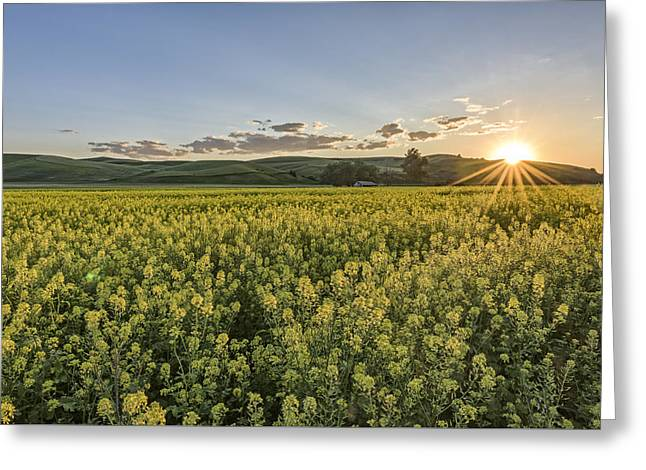 Original Photographs Greeting Cards - Edge of Daytime Greeting Card by Jon Glaser