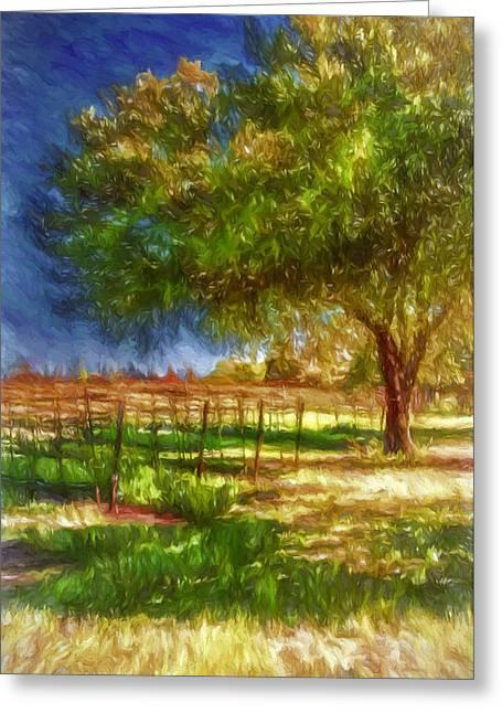 Viticulture Digital Greeting Cards - Edge of the Vineyard Greeting Card by John K Woodruff