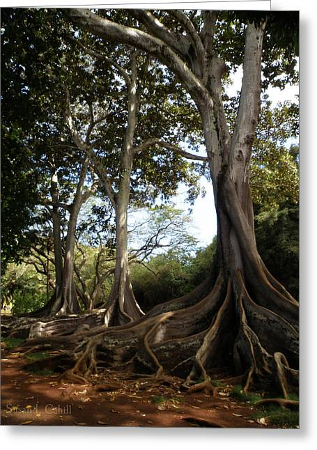 Eerie Greeting Cards - Eerie Jurassic Park Trees Greeting Card by Susan I Cahill
