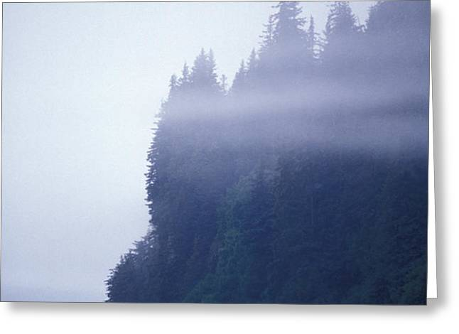 Eerie Seascape With Trees, Cliff Greeting Card by Rich Reid