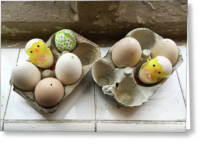 Eggs Decorated For Easter Greeting Card by Tom Gowanlock
