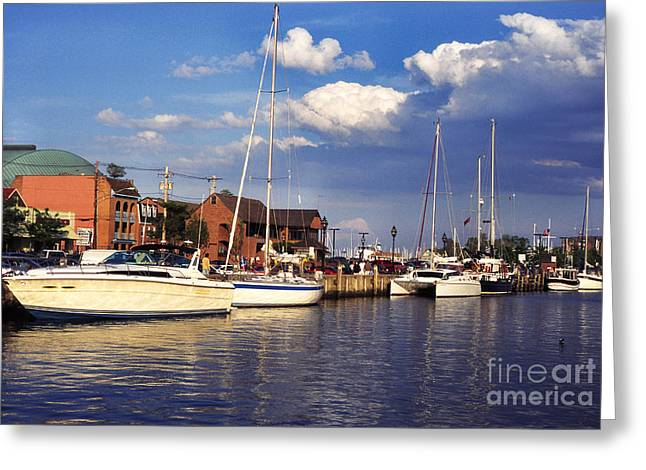 Late Evening Greeting Cards - Ego Alley Annapolis Greeting Card by Thomas R Fletcher