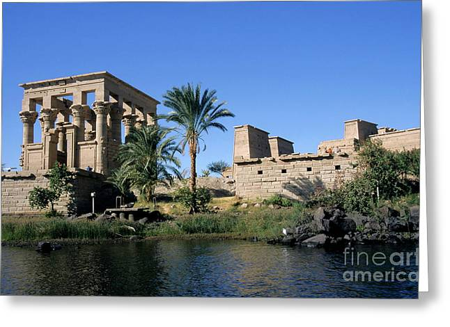 Egypt Philae Temple Greeting Card by Sami Sarkis