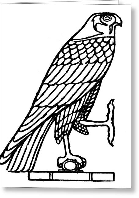 Egyptian Symbol: Falcon Greeting Card by Granger