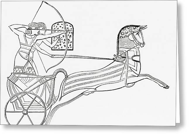 Civilization Greeting Cards - Egyptian War Chariot. From The Imperial Greeting Card by Ken Welsh