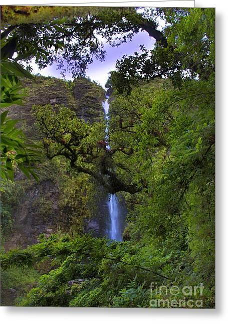 Raining Greeting Cards - El Chorros Waterfalls of Giron XII Greeting Card by Al Bourassa