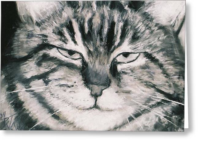 Feline Pastels Greeting Cards - El Gato Greeting Card by Billie Colson