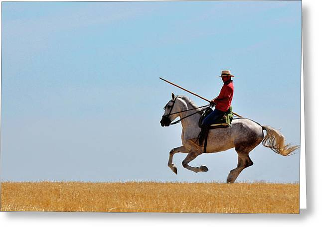 Galop Greeting Cards - El Jinete Greeting Card by Michael Mogensen