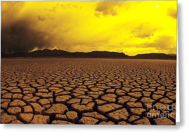 Mud Season Greeting Cards - El Mirage Desert Greeting Card by Larry Dale Gordon - Printscapes