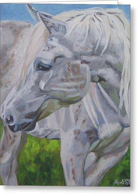 Equine Artist Greeting Cards - El Pine Greeting Card by Anne West