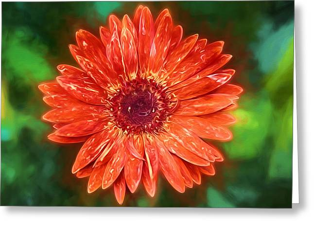 Electric Orange Daisy Greeting Card by John Haldane