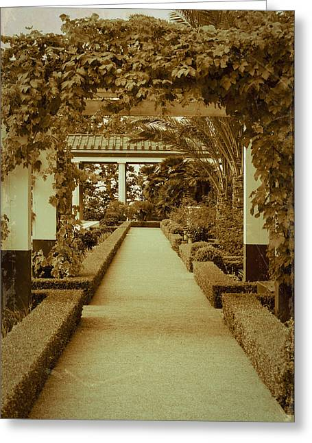 Trellis Greeting Cards - Elegant Aged Path Greeting Card by Teresa Mucha