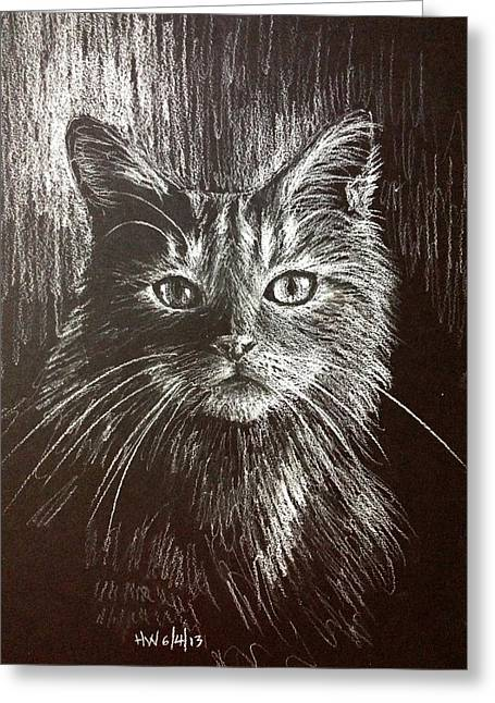 Cute Kitten Pastels Greeting Cards - Elegant cat Greeting Card by Holly Whiting